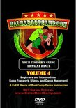 Salsa Boot Camp: Beg. & Int. Salsa Footwork and Shines, Vol 4